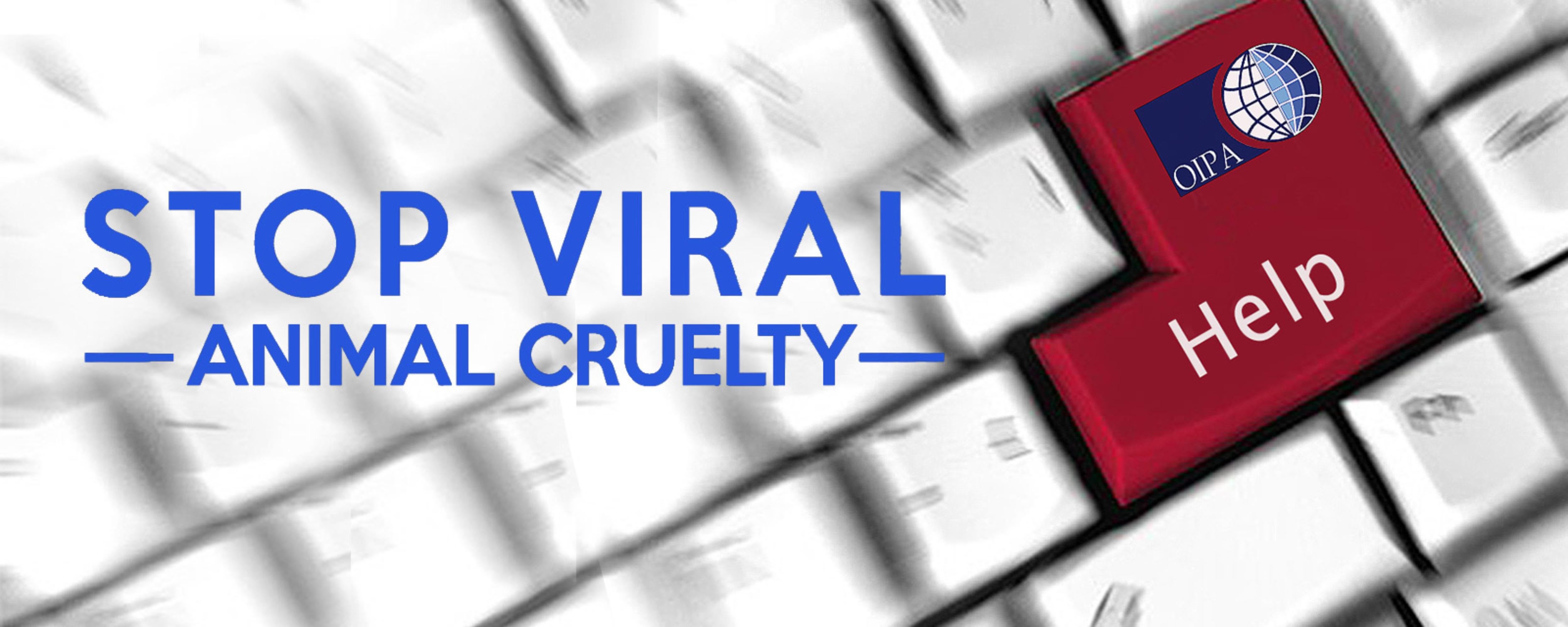 slider-viral1