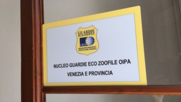 inaugurazione-sede-gez-venezia-2-1600x1200