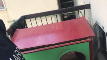 brescia-gez-sequestro-malamute-1-1600x1200