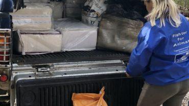 consegna-cibo-gez-firenze-3-1600x1200